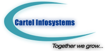 Cartel Infosystems Pvt Ltd
